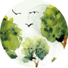 Imagery of green trees and birds