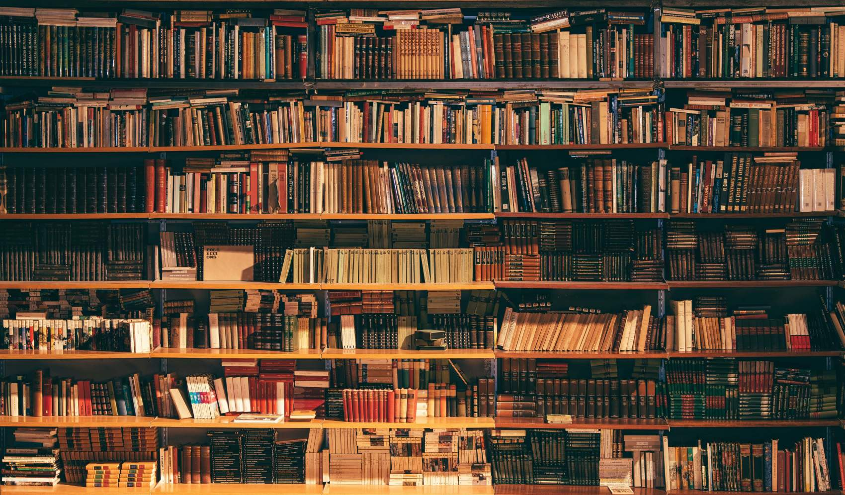 books line the shelves of a cluttered library
