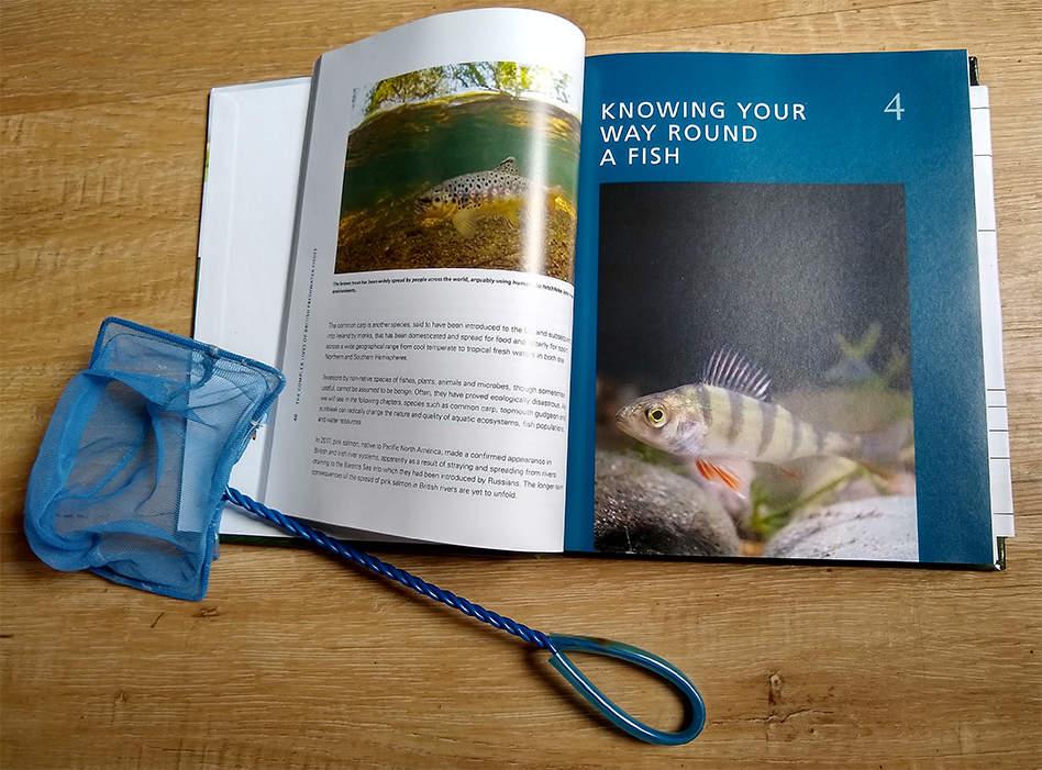 Fish book and fish net